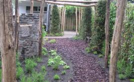 Janssen Beek en Donk tuin met Robinia pergola (10)