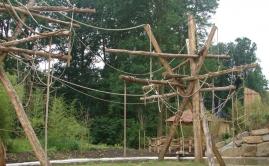 Zware Robinia klimpalen voor de Apen in de ZOO