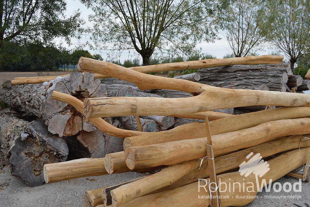 Tuin Houten Palen : Robiniawood y palen en meertakken robiniawood