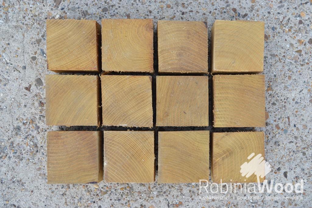 2_RW Stepwood 10x10_KL