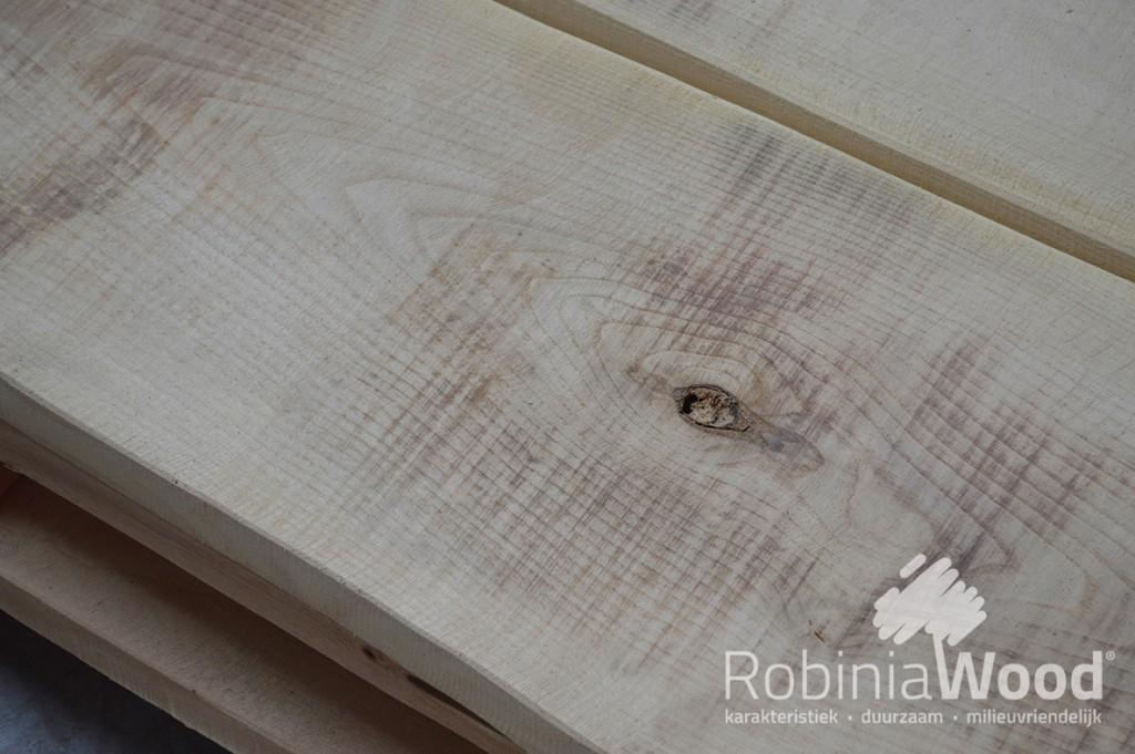 3_RW Schaaldeel 5 cm dik Spintvrij geschuurd_KL