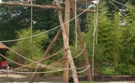 Zware Robinia klimpalen voor de Apen in de ZOO (3)