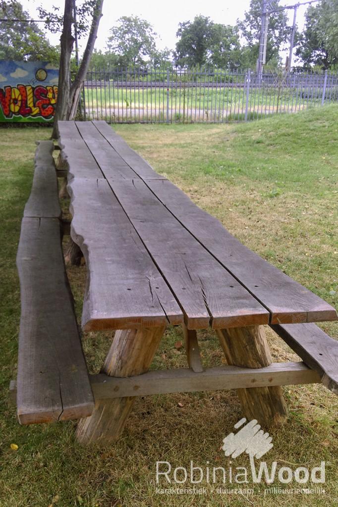 1_rw-picknick-tafel-tree-9-mtr_kl
