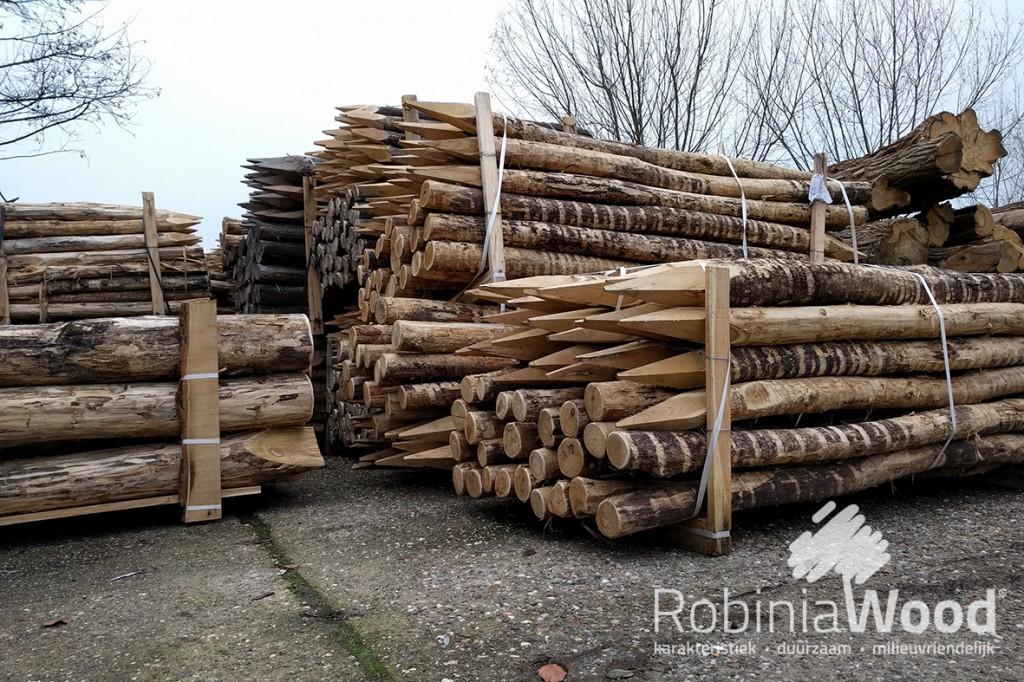 5_rw-robinia-paal-pks-10-12-cm_dec2016_kl