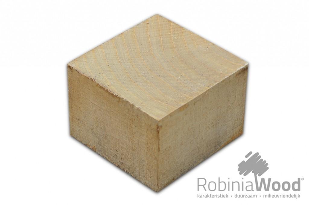 1_RW Stepwood 10x10_VRIJ_KL